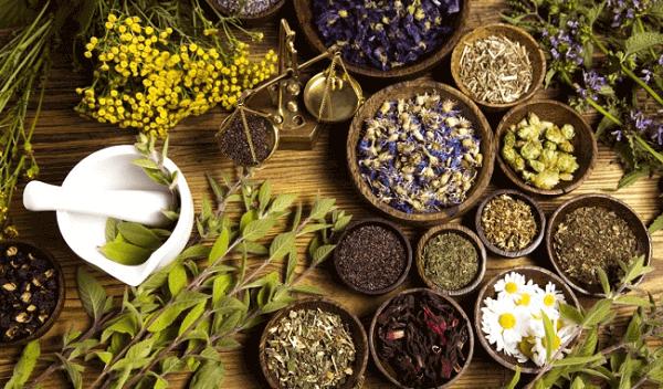 Thành phần của các dòng sản phẩm đều được chiết xuất từ thảo dược quý