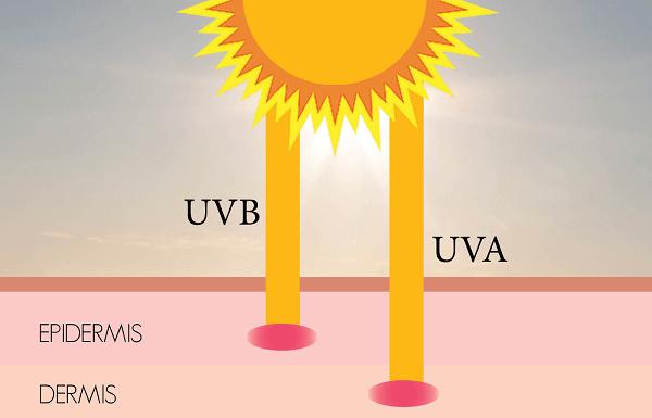 Tia UVA, UVB có trong ánh nắng mặt trời chính là nguyên nhân chính gây sạm nám, lão hóa
